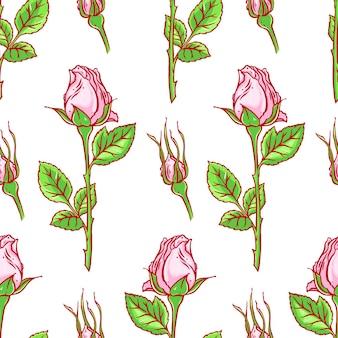 Schöner bunter nahtloser hintergrund der rosa rosen auf einem weißen hintergrund. handgezeichnete illustration