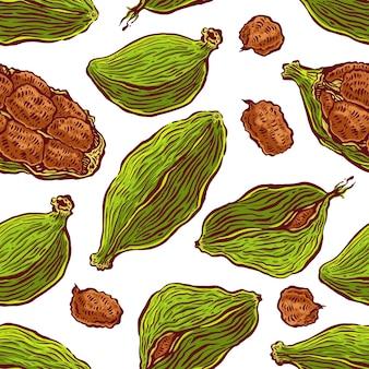 Schöner bunter nahtloser hintergrund des kardamoms. handgezeichnete illustration