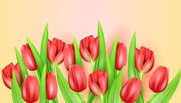 Schöner hintergrund der frühlingsblume mit realistischen tulpen.