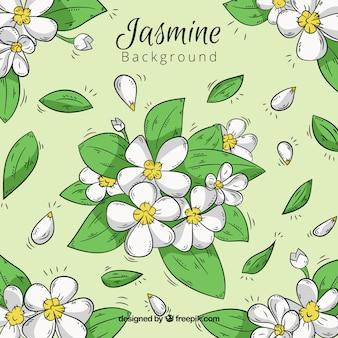 Schöner jasmin-hintergrund