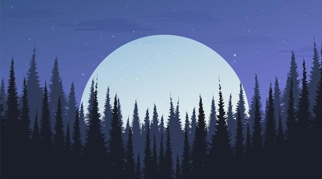 Schöner nachtkiefernwald mit dem mond, landschaftshintergrund, abendkonzept