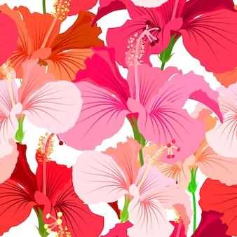 Schöner nahtloser blumenmusterhintergrund. tropisches blumenmuster. hibiskusblüte de