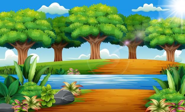 Schöner park mit flüssen und grünen bäumen