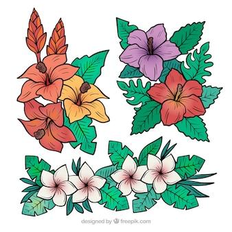 Schöner satz hand gezeichnete tropische blumen