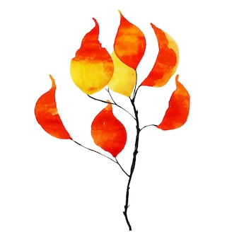 Schönes aquarell autumn leaf element
