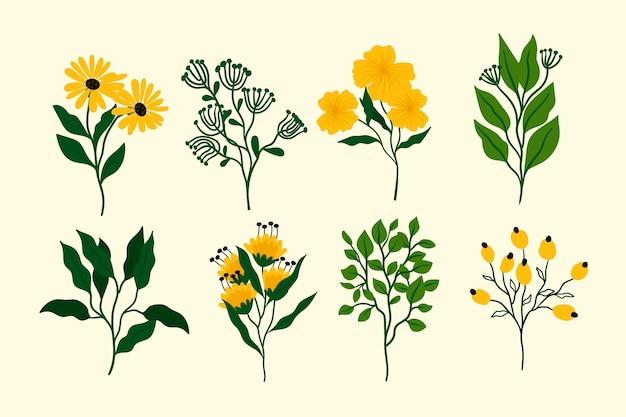 Schönes frühlingsblumenset des flachen entwurfs