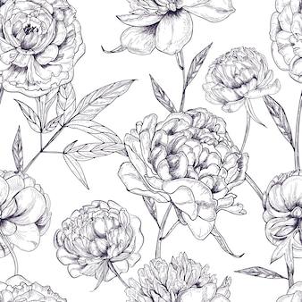 Schönes nahtloses muster der pfingstrosen. hand gezeichnete blüten, knospen und blätter. schwarzweiss-illustration.