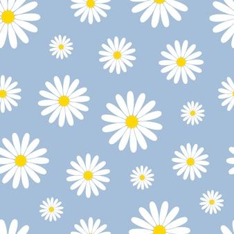 Schönes nahtloses muster mit weißen gänseblümchen auf blau.