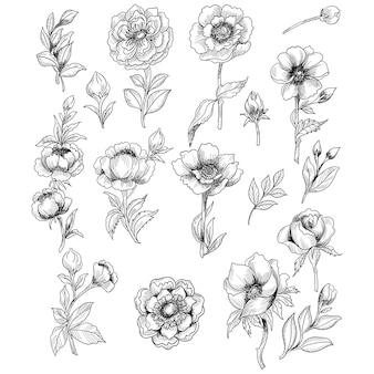 Schönes skizzenblumen-set-design