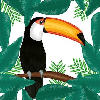 Schönes tukan mit exotischer und tropischer blattdekoration
