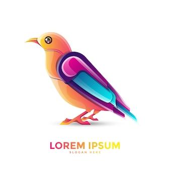 Schönes vogel-logo-schablonendesign