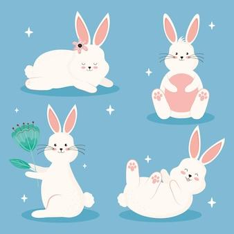 Schönheit vier kaninchen