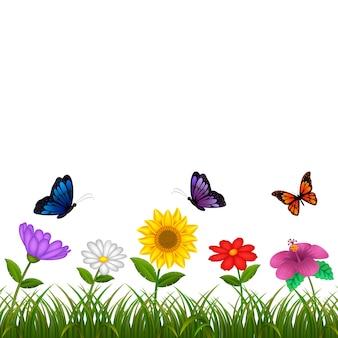 Schöne Aussicht mit der verschiedenen Blume und etwas Schmetterling