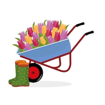 Schubkarre mit tulpenblumen und gummistiefeln, farbisolierte vektorillustration