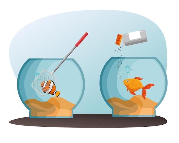 Schüssel aquarium mit fisch