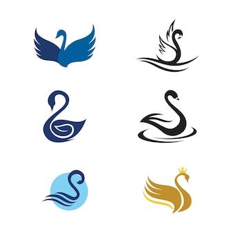 Schwan-symbol vorlage vektor-illustration-design