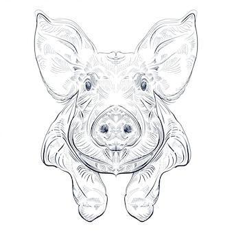Schwarz und weiß gravieren lokalisiertes schwein mit den beinen