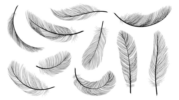 Schwarze federn. isolierte fliegende federn, gefieder der schwarzen vogelvektorillustration. vogelgefieder und feder isoliert, designfeder