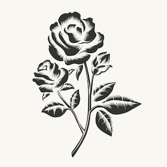 Schwarze hand gezeichnete rosen gravur
