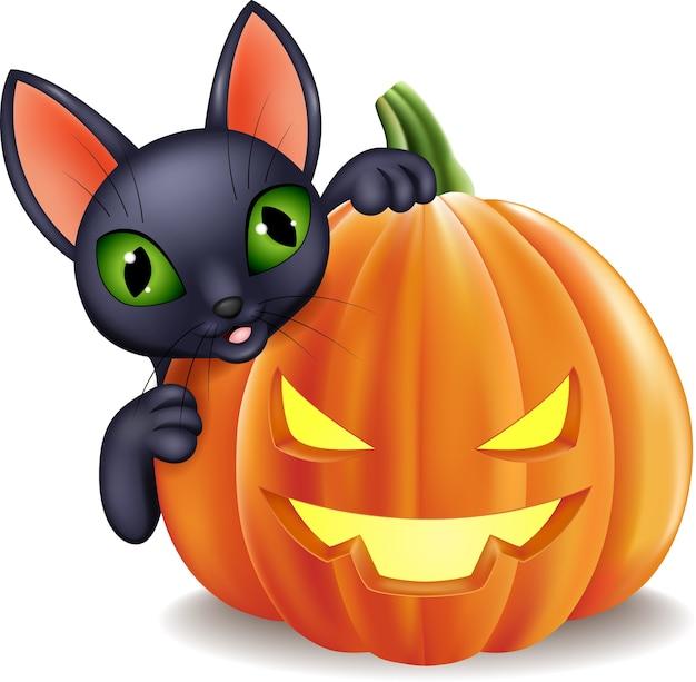 Schwarze katze der karikatur, die halloween-kürbis hält