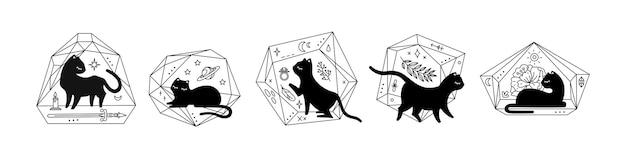 Schwarze magische katzen in kristallflorarien, verschiedene posen, süße katzensilhouette. schwarze illustration isoliert auf weißem hintergrund