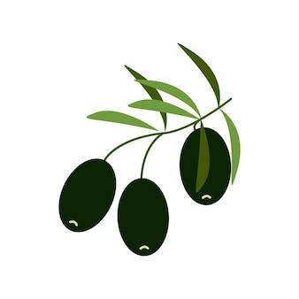 Schwarze oliven auf einem ast, gesundes essen, vektor-cliparts im flachen stil, isolieren auf weiß.