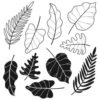 Schwarze schattenbilder der tropischen dschungelblattkarikatur stellten lokalisiert auf einem weißen hintergrund ein.
