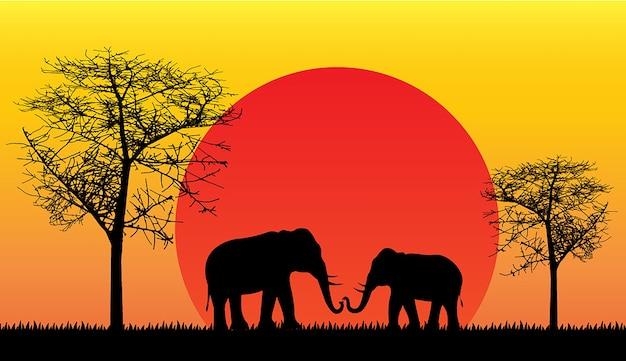 Schwarze silhouette des elefanten