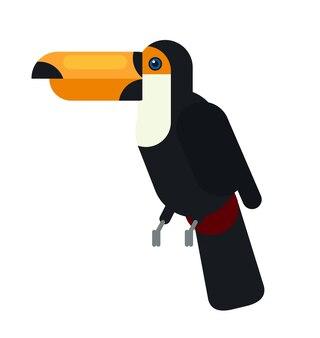 Schwarzes tukan, das auf das naturnaturtier des baumasts im freien legt