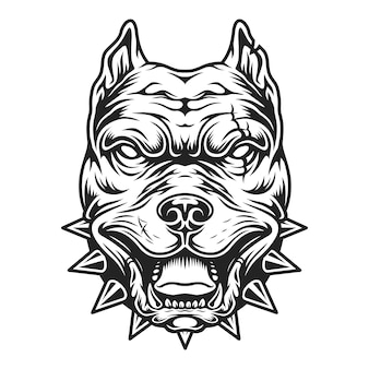 Schwarzweiss-pitbullkopf