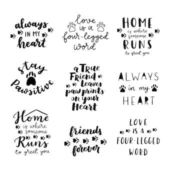 Schwarzweiss-plakat der katzen- und hundesatz. inspirierende zitate über katze, hund und haustiere. handgeschriebene sätze über die adoption von haustieren. adoptiere einen hund oder eine katze.