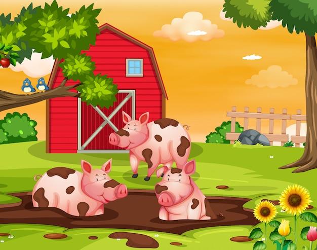 Schwein auf dem bauernhof