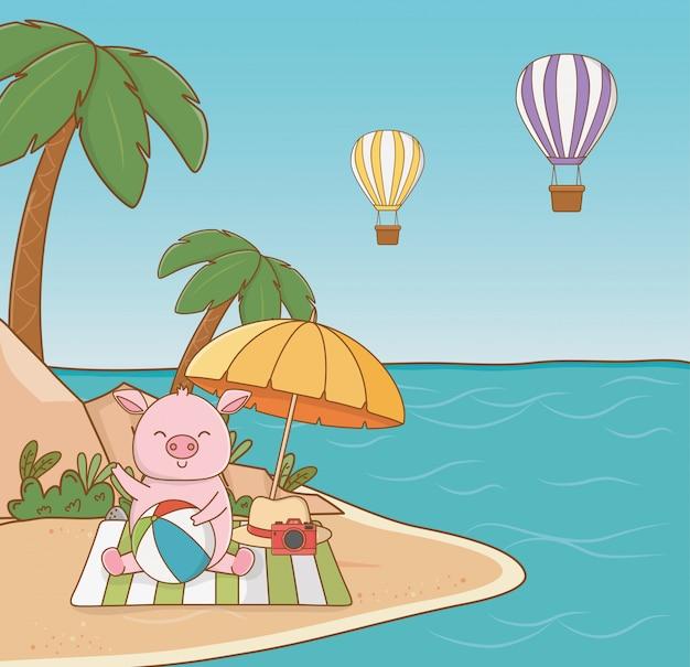 Schwein cartoon und sommersaison
