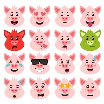 Schwein emotionen gesichter packen