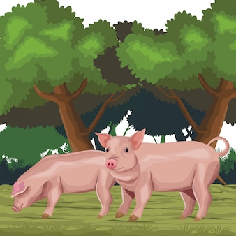 Schwein-symbol-cartoon