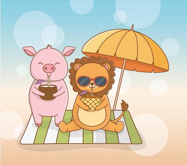 Schwein- und löwekarikatur in der sommersaison