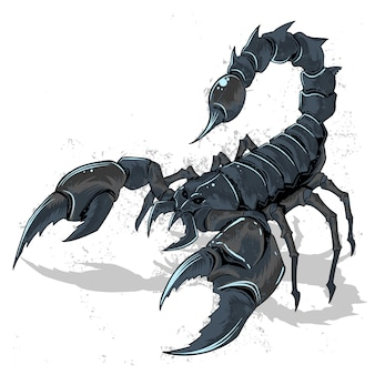 Scorpion bug horoscope zodiac vector