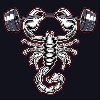 Scorpion gym
