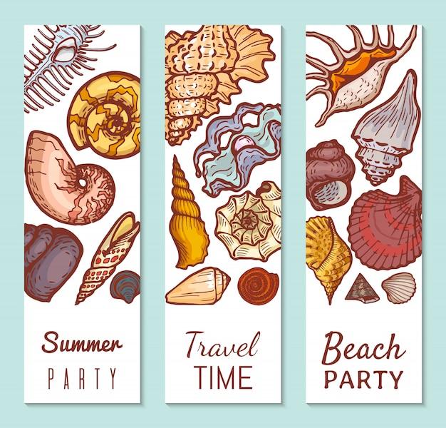 Sea shell poster konzept banner, sommer party reisezeit und strand sammeln illustration. tropischer urlaub, erkunden sie die flora und fauna des ozeans.