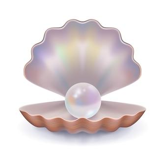 Seashell mit einer perle