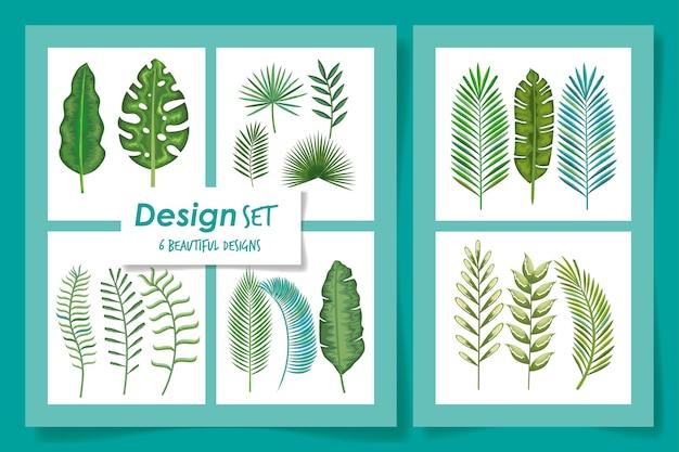 Sechs des tropenblattvektor-illustrationsdesigns