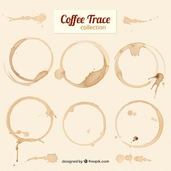 Sechs fantastische kaffeeflecken