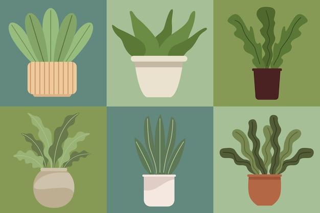 Sechs zimmerpflanzen in töpfen