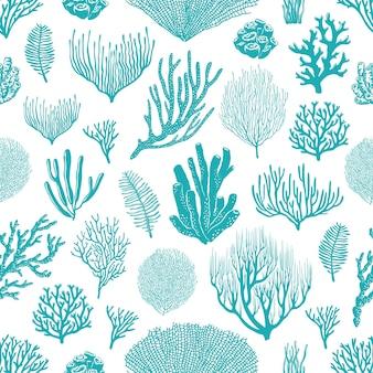 Seekorallen, schwämme und algen nahtlose muster