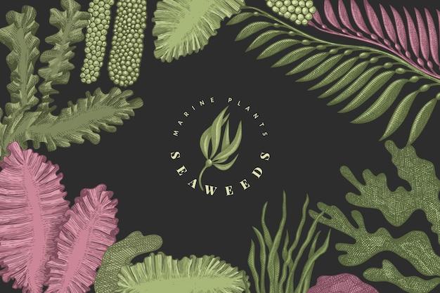 Seetang-farbentwurfsschablone. hand gezeichnete algenillustrationen auf dunklem hintergrund. gravierte art meeresfrüchte banner. retro meer pflanzen hintergrund
