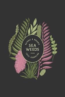 Seetang vorlage. hand gezeichnete seetangillustration. gravierte art meeresfrüchte banner. retro meer pflanzen hintergrund