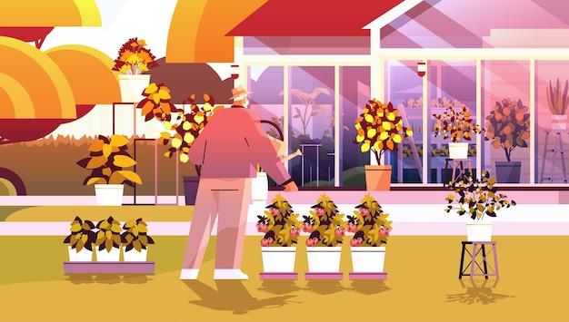 Senior gärtner mit gießkanne kümmert sich um topfpflanzen im hinterhofgewächshaus oder hausgarten