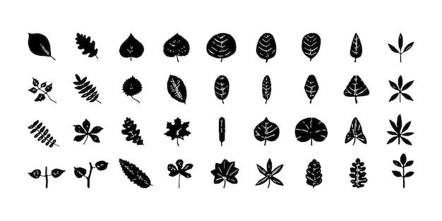 Set aus blättern und pflanzen Premium Vektoren