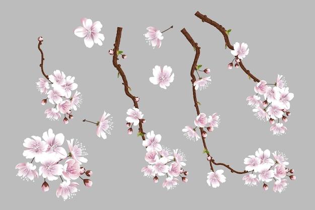 Set aus blühenden sakura-zweigen