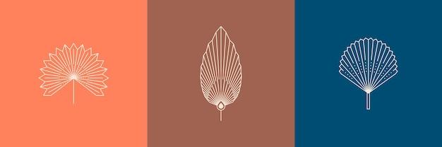 Set aus getrockneten palmblättern in einem trendigen minimalen linearen stil. vektor-tropisches blatt-boho-emblem. blumenillustration zum erstellen von logos, mustern, t-shirt-drucken, tätowierungen, social-media-posts und geschichten